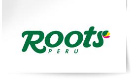 logo-roots-e1532971170469